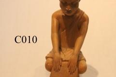 C010.1