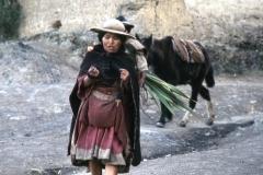 Bolivia019