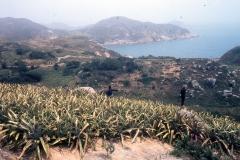 China Coast138