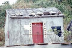 China Coast153