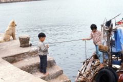 China Coast280