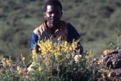 East Africa022