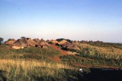 East Africa044