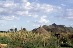 East Africa259