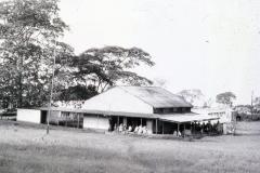 Africa084
