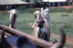East Africa023