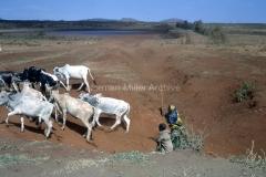 East Africa030