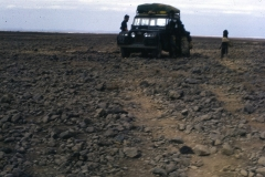 East Africa346