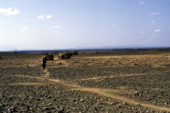 East Africa344