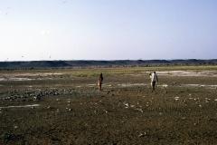 East Africa441