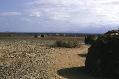 East Africa456