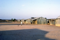 East Africa439