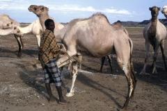 East Africa083