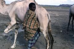 East Africa405